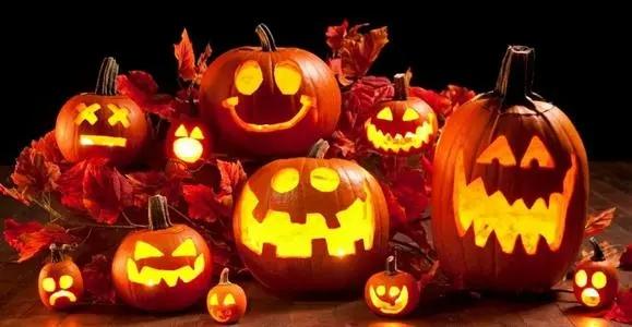 Pumpkin is also a symbol of Halloween